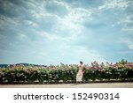 Stock photo lady in the garden of roses 152490314