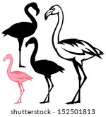 raster   flamingo bird outline... | Shutterstock . vector #152501813