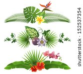 3 decorative tropical borders... | Shutterstock .eps vector #152537354