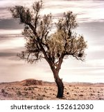 vintage photograph from a moroccan landscape  - stock photo
