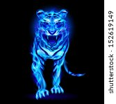 blue fire tiger isolated on... | Shutterstock .eps vector #152619149