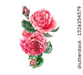 Vintage Watercolor Red Roses ...
