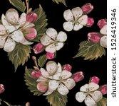 apple tree flowers seamless... | Shutterstock .eps vector #1526419346