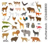a large set of african  forest... | Shutterstock .eps vector #1526688800