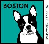 boston terrier vector | Shutterstock .eps vector #152702159