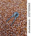 hazelnuts food background. nuts ...
