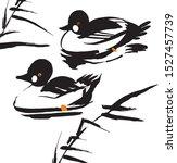 Duck Golden Eye  Chinese...