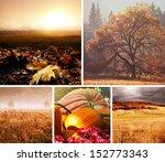 autumn orange collage | Shutterstock . vector #152773343