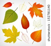Autumn Vector Leaf Illustratio...