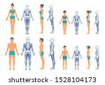 human body and skeleton with a... | Shutterstock .eps vector #1528104173