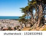 San Francisco  California Usa 2 ...