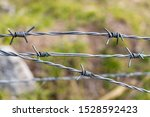 Barbed Wire  Also Known As Barb ...