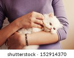 Stock photo young woman holding a white kitten 152914370