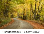 Dirt Road With Fall Colors