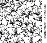 floral seamless pattern with... | Shutterstock . vector #152951633