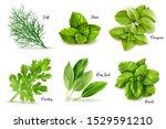 Herbs Set On A White Backgroun...