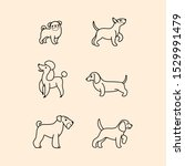 Stock vector dogs icon set dogs in various poses and action vector illustration for prints clothing 1529991479