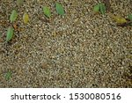 Gravel Clean Yellow Stones With ...