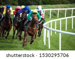 Small photo of Race horseing action, lead race horse and jockey taking the final turn towards the finish line