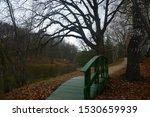 nature in Spassky Lutovinovo, trees around the lake, green bridge