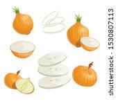 cartoon onions set. whole...