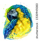 Macaw Parrot. Hand Drawn ...