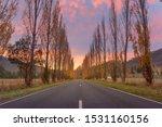 Autumn on the Buxton-Marysville Road, Victoria