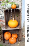 Autumnal Gourd Display. Crates...