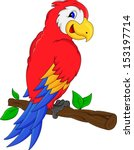 macaw bird cartoon | Shutterstock .eps vector #153197714
