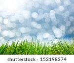 selective focus green grass... | Shutterstock . vector #153198374