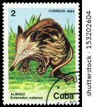 Small photo of CUBA - CIRCA 1984: a stamp printed by Cuba show snakes Alsophis cantherigerus, circa 1984