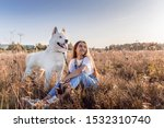 Stock photo white cute dog on a walk the breed is a samoyed husky dog in the field looks into the distance 1532310740