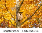 Bird House On The Autumnal...