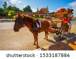 The Horse Carriage In Lampang...