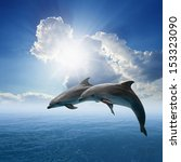 couple jumping dolphins  blue... | Shutterstock . vector #153323090