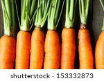 Raw Fresh Carrots With Tails ...