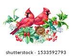 Winter Card  Beautiful Birds...