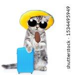Cute Kitten Wearing A Summer...