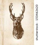 hand   drawn illustration of...   Shutterstock .eps vector #153462620