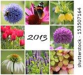 Garden Collage 2013