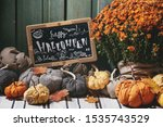 Wool And Textile Pumpkins For...