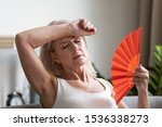 Small photo of Tired overheated middle aged lady wave fan suffer from menopause exhaustion complain on heat at home, stressed old woman sweat feel uncomfortable hot in summer weather problem without air conditioner