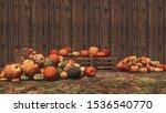 Autumn Pumpkins Laid Out On...