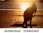 Symbol S Of Australia The Beac...