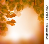 autumn leaves  blurred... | Shutterstock . vector #153664064