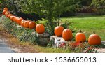 Fall Pumpkins On A Rock Wall In ...