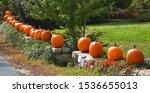Fall Pumpkins On A Rock Wall I...