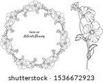 vector set. delicate flowers....   Shutterstock .eps vector #1536672923