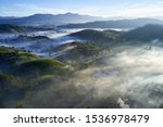 Aerial View Of Misty  Green ...