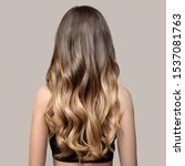 Small photo of Portrait of a beautiful young brunette woman with long wavy hair. Back view.